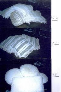immagine 013
